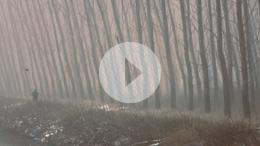 We Hunt Trailer