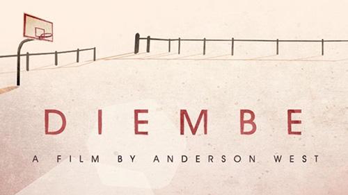 Diembe | Crowdfunding We Dig