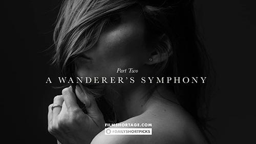 Daily Short Picks   A Wanderer's Symphony