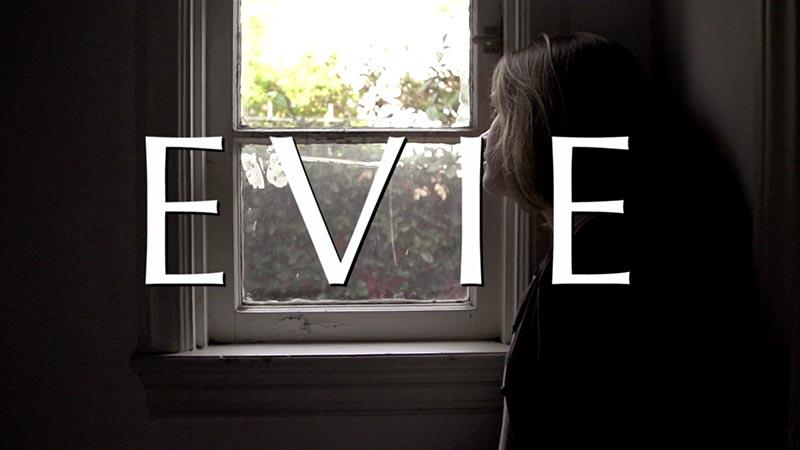 Evie // Crowdfunding Pick We Dig