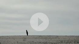 Backwards - Short Film Trailer