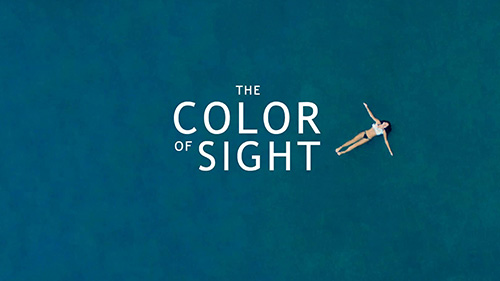 Daily Short Picks | The Color of Sight