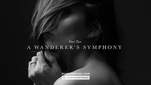 Daily Short Picks | A Wanderer's Symphony
