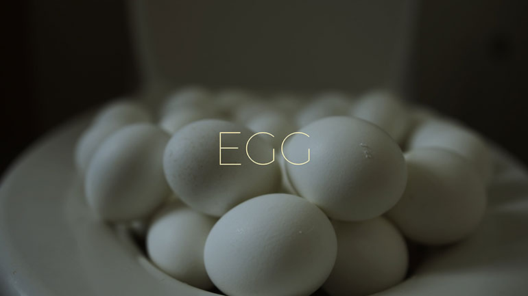 Egg || Daily Short Picks