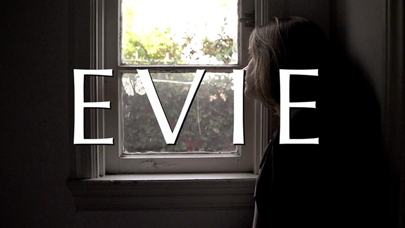 Evie // Crowdfunding Pick We Dig
