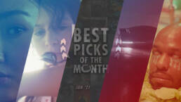 Best Picks of The Month : January 2021